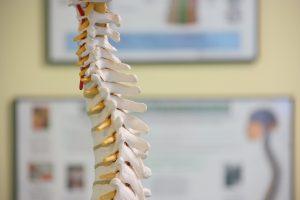 spine, back, low back, neck, pain, relief, Dublin, Sallins, chiropractor, chiropractic